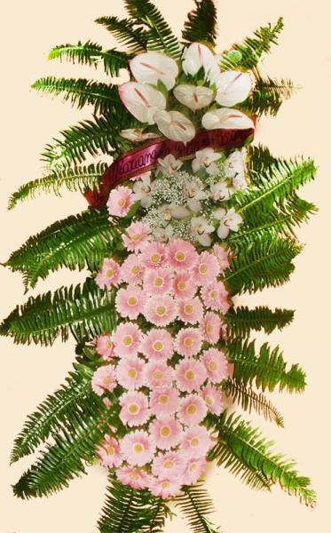copribara gerbere-orchidee-ferri-ferruccio